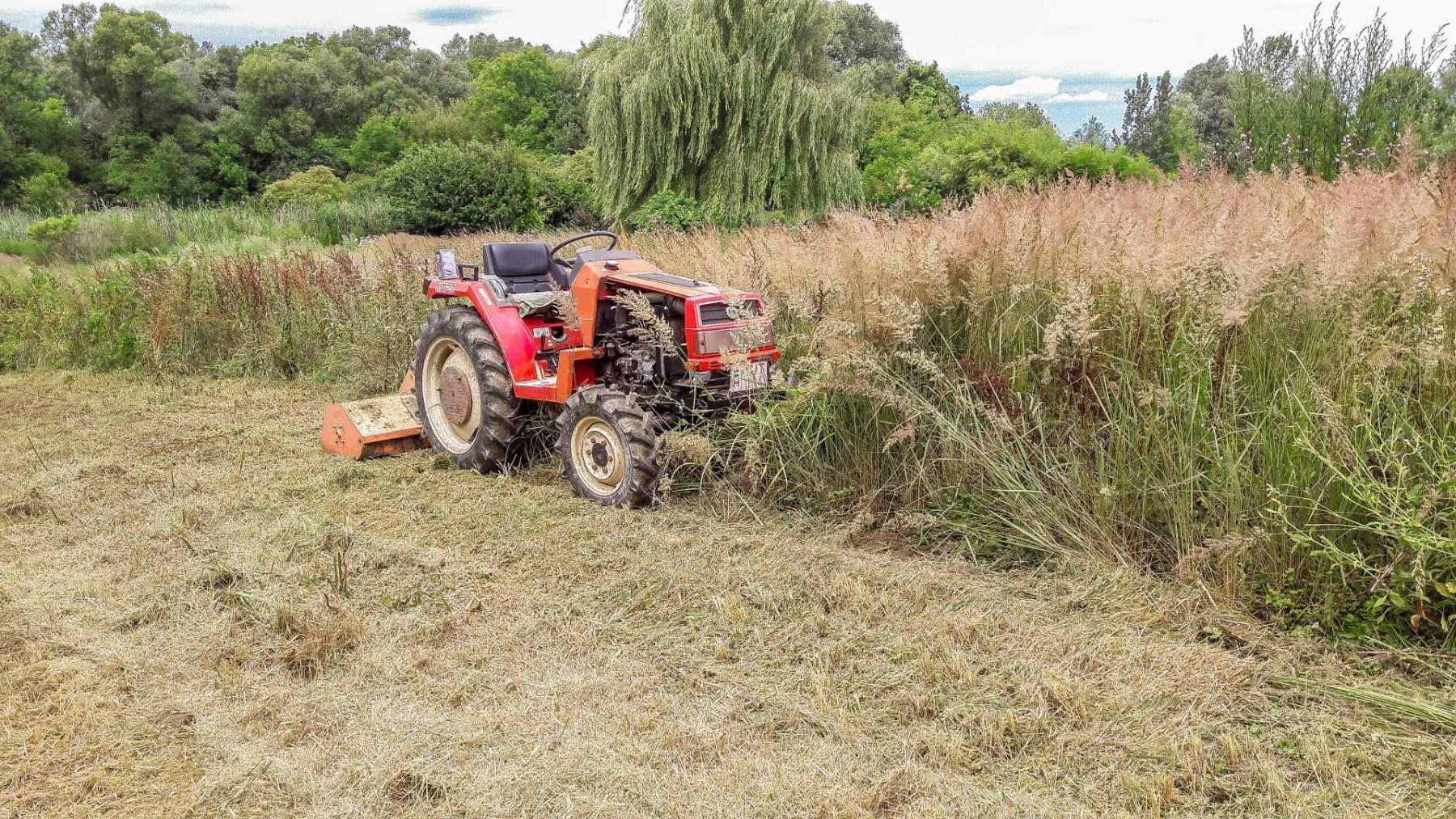 Szárzúzó használatával, gyorsan és hatékonyan tiszta terület varázsolható az elhanyagolt területekből